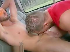 gay N169...